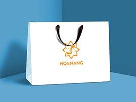 In_Tui_Giay_HOA_NANG