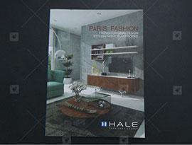 In_Catalogue_dan_gay__HALE